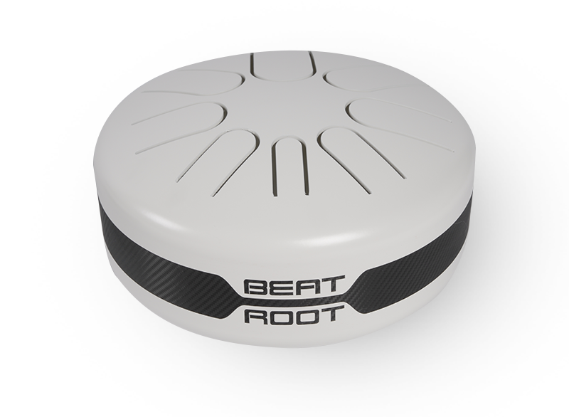 Beat Root Acoustique